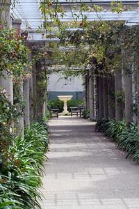 Huntington Gardens.