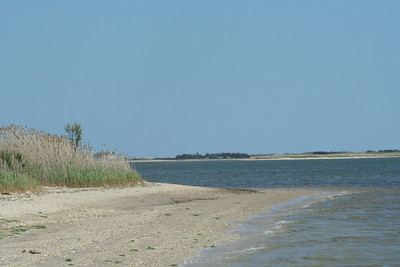 Terrell River County Park, Center Moriches, NY.