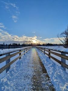 Telford Lake Boardwalk in Winter