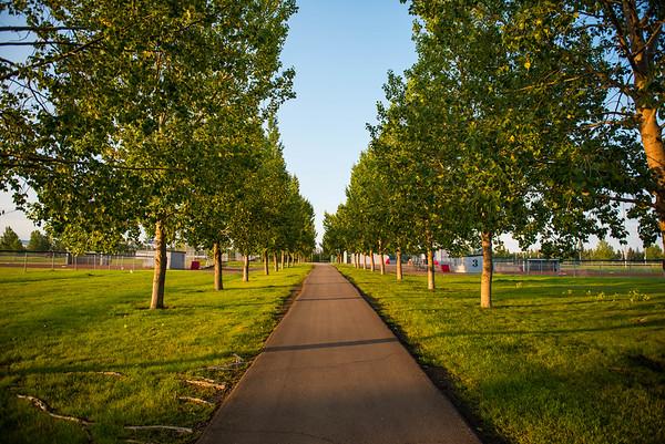 William F Lede Park