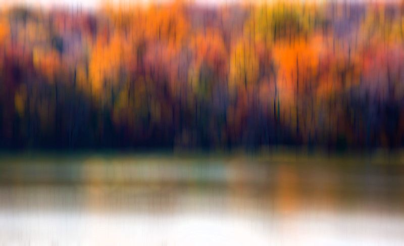 Memories of fall.
