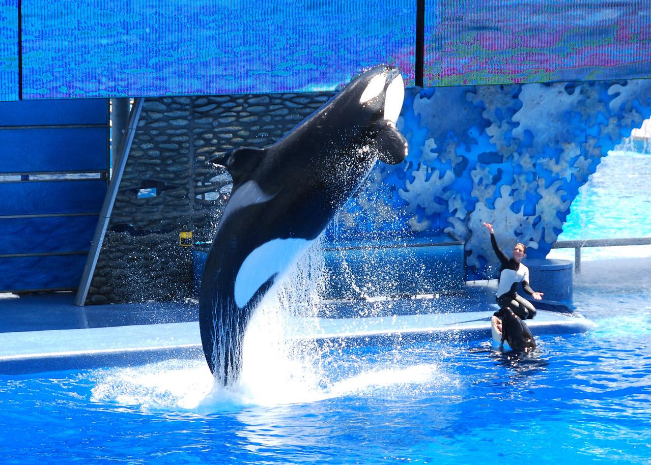 2008 09 13 - SeaWorld with the Calderons 023