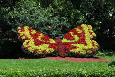 2009 06 20 - Bush Gardens 006