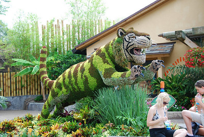 2009 06 20 - Bush Gardens 042