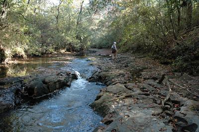 Download your Econfina Creek Canoe Trail brochure here:  http://www.nwfwmd.state.fl.us/lands/econfina/EconfinaCanoeBrochure.pdf