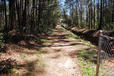7 Straight ahead is the Blairstone Road overpass. You may also access a piece of the original Fern Trail by going that way, then left.