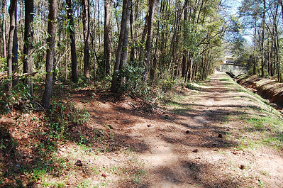"8 Here's where we head in - the ""west"" trailhead of Fern Trail's singletrack."