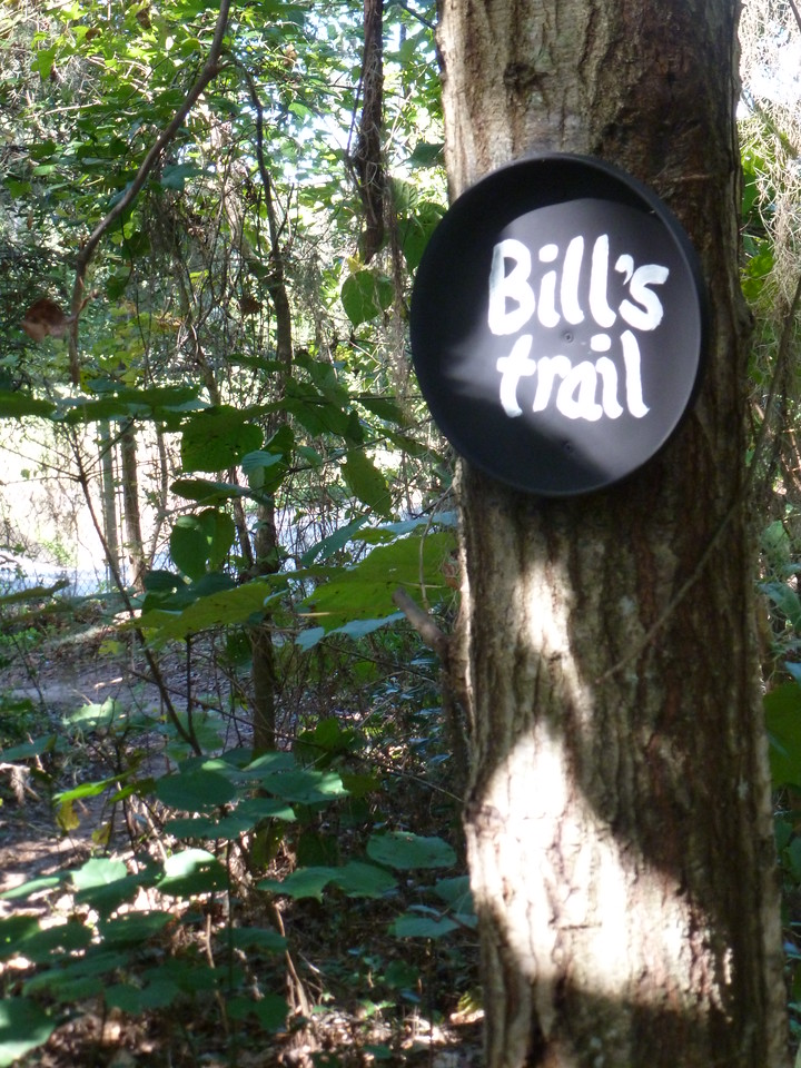 3 November 2014: Newly lettered sign Frisbee at the east end of Bill's Trail. Got the paint job yesterday from the original artist.