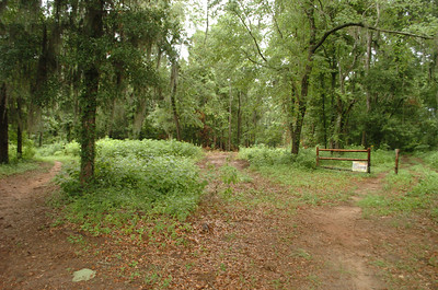 I'm in Alford Greenway Park, looking ~SW toward the Lafayette Heritage Trail Park boundary.