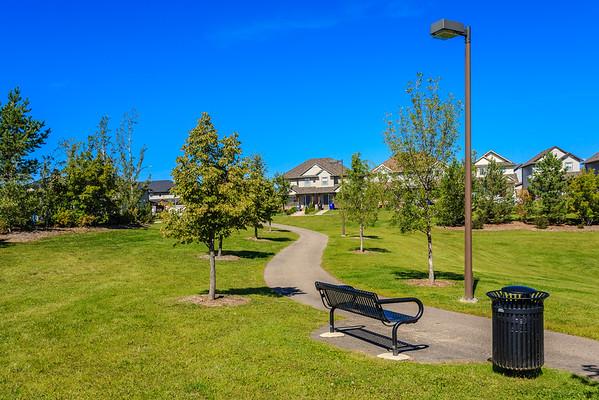 Al Anderson Park