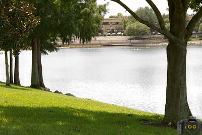 Cranes-Roost-Park_0039