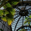 Inside the Botanical Garden