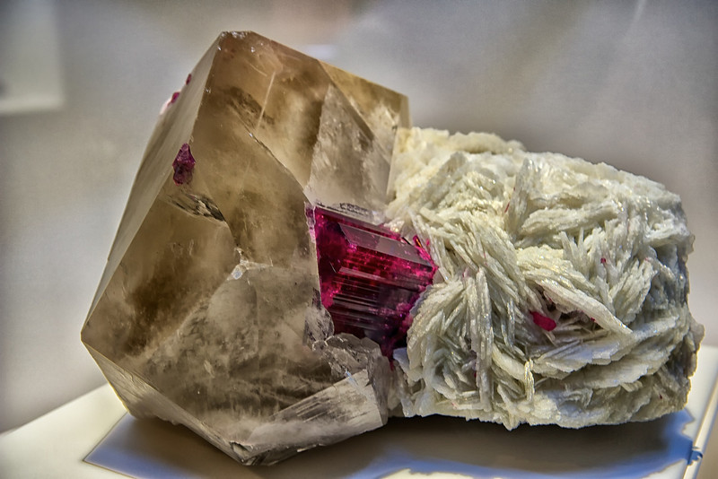 """FLOR de LIS"" - one of the world's largest and most spectacular rubellite (red tourmaline) specimens - <br /> was found in 1978 in Brazil's Jonas Mine, famous for producing unique cranberry-red<br /> rubellites. It is rumored that miners guarded these rare treasures using poisonous snakes.<br /> Natural History Museum in Balboa Park, San Diego Featuring ""ALL THAT GLITTERS"" - The Splendor & Science of Gems & Minerals.<br /> Exhibition Highlights:<br /> <a href=""http://www.sdnhm.org/archive/exhibits/allthatglitters/highlights.php"">http://www.sdnhm.org/archive/exhibits/allthatglitters/highlights.php</a><br /> ***Photos taken without flash through glass/plexiglass"