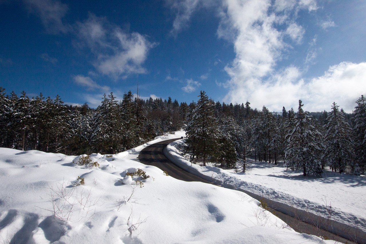 Snow-4549