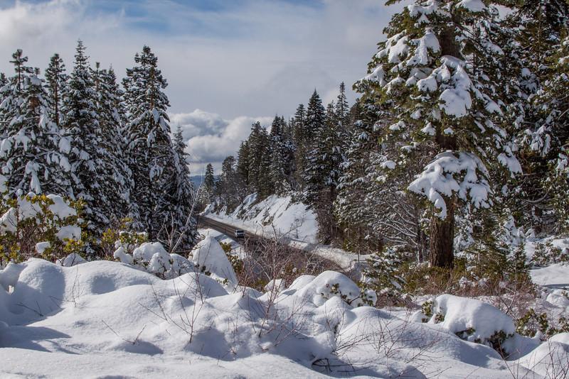 Snow-4539