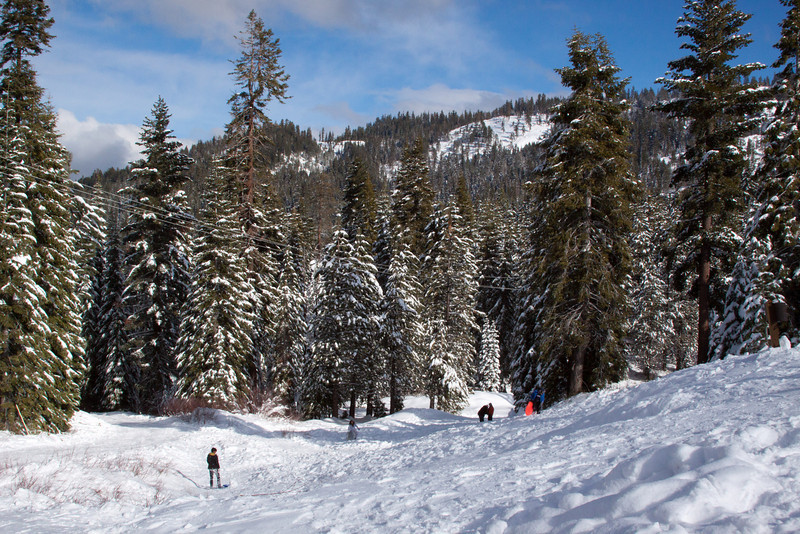 Snow-4533