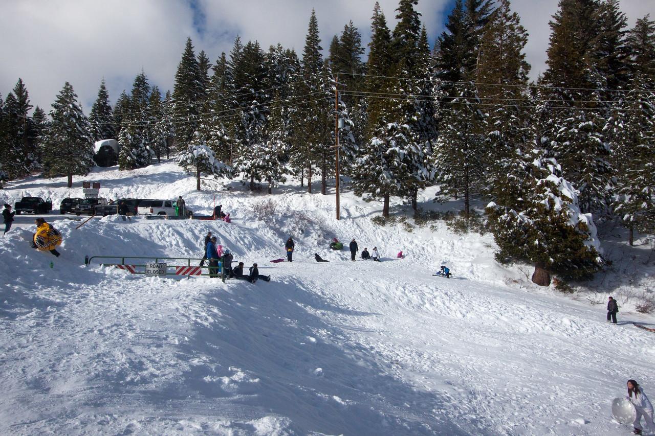 Snow-4554