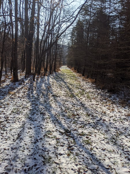 Hiking Trail at the Blacklick Valley Natural Area