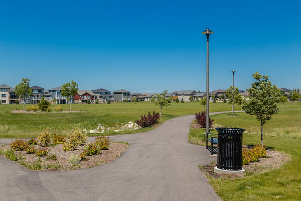 Blair Nelson Park
