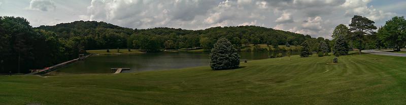 Blue Spruce Panorama