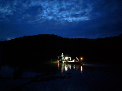 Nighttime Fish Survey