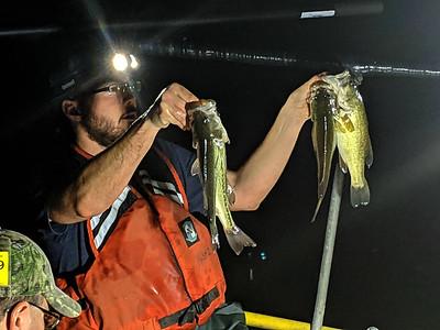 Fish Survey of Blue Spruce Lake
