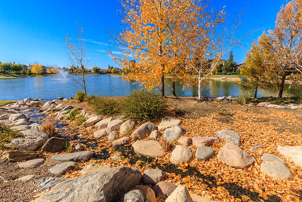 Briarwood Lake Park