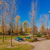 Budz Green Park