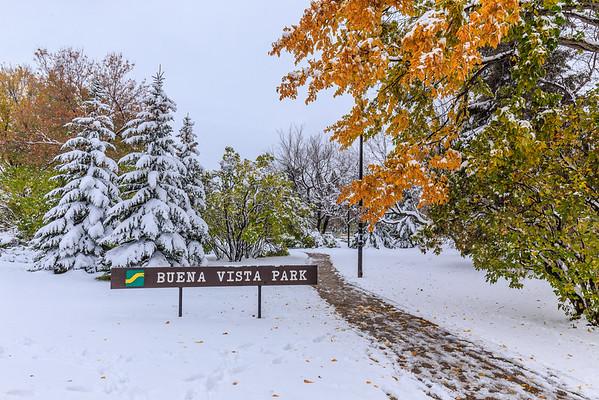 Buena Vista Park