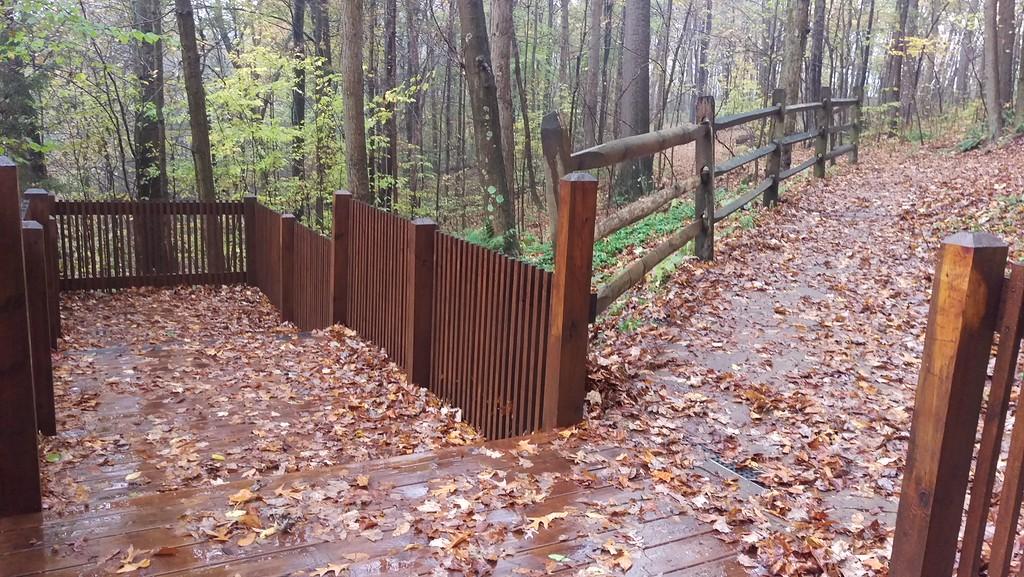 Buttermilk Falls Observation Deck