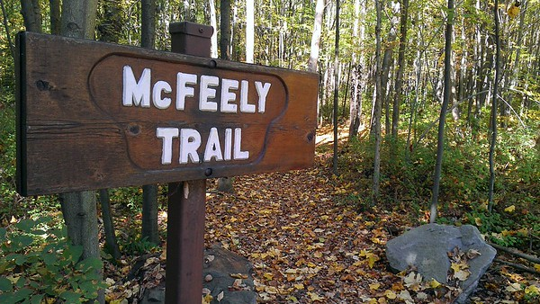 The McFeely Trail is a short loop trail that circles the outer edge of the Buttermilk Falls Natural Area. It's named for Fred McFeely, the grandfather of Fed Rogers of children's television fame. Mr. McFeely once owned the property.