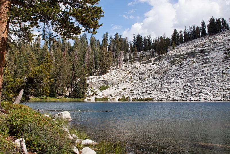 Jennie Lake Wlid-4135