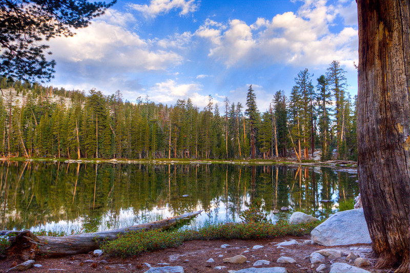 Jennie Lake Wlid-4153_4_5_tonemapped
