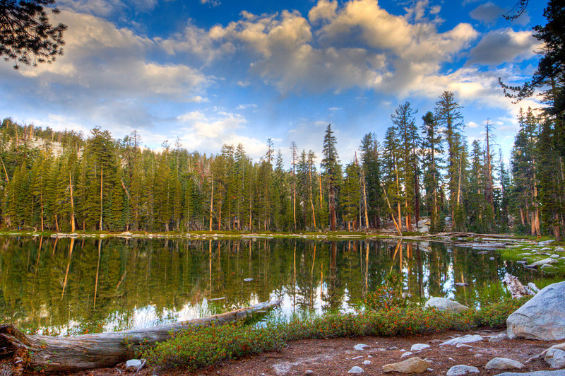 Jennie Lake Wlid-4150_1_2_tonemapped_2
