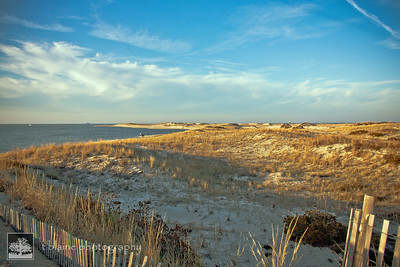 The Point, Cape Henlopen State Park