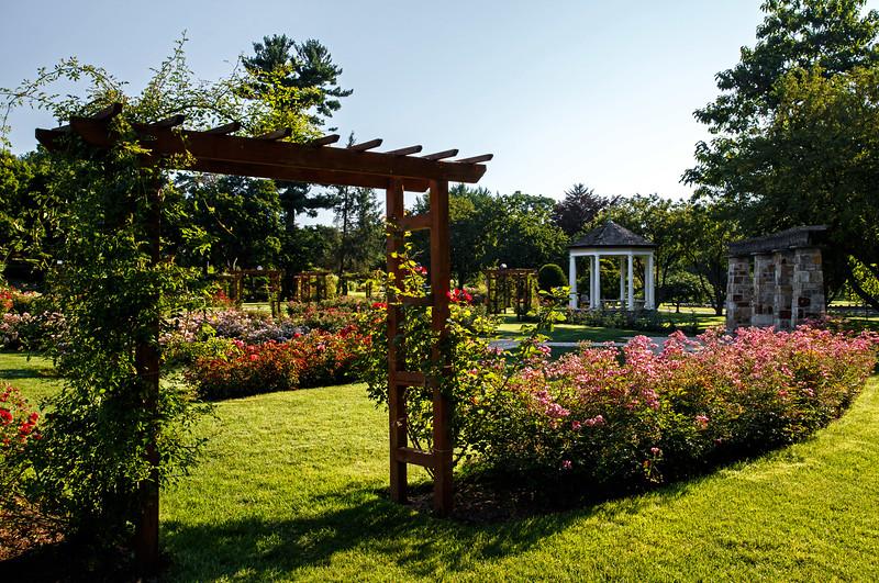 The Rose Garden - Cedar Creek Park - Allentown, PA - 2015