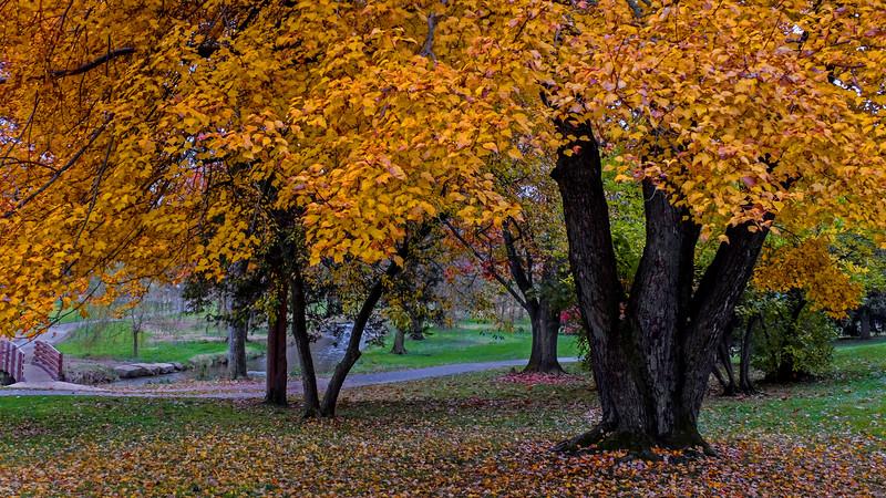 Cedar Creek Park - Allentown, PA - 2018
