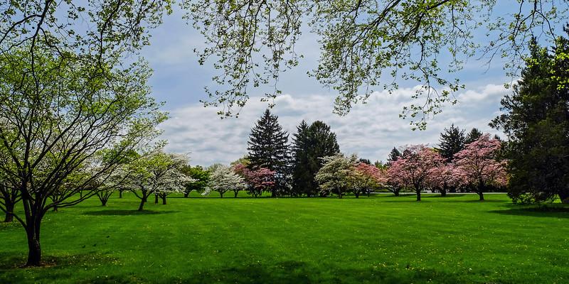 Cedar Creek Park - Allentown, PA - 2019