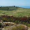 West Meadow Trail