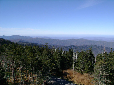 From the viewing tower at Clingmans Dome