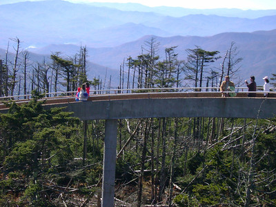 Walkway to Clingmans Dome