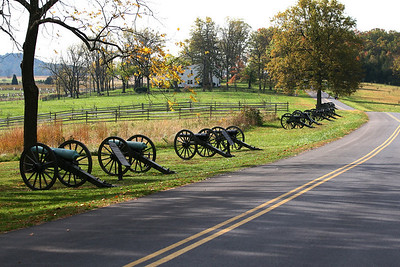 Cannons on the drive by P. Saavedra