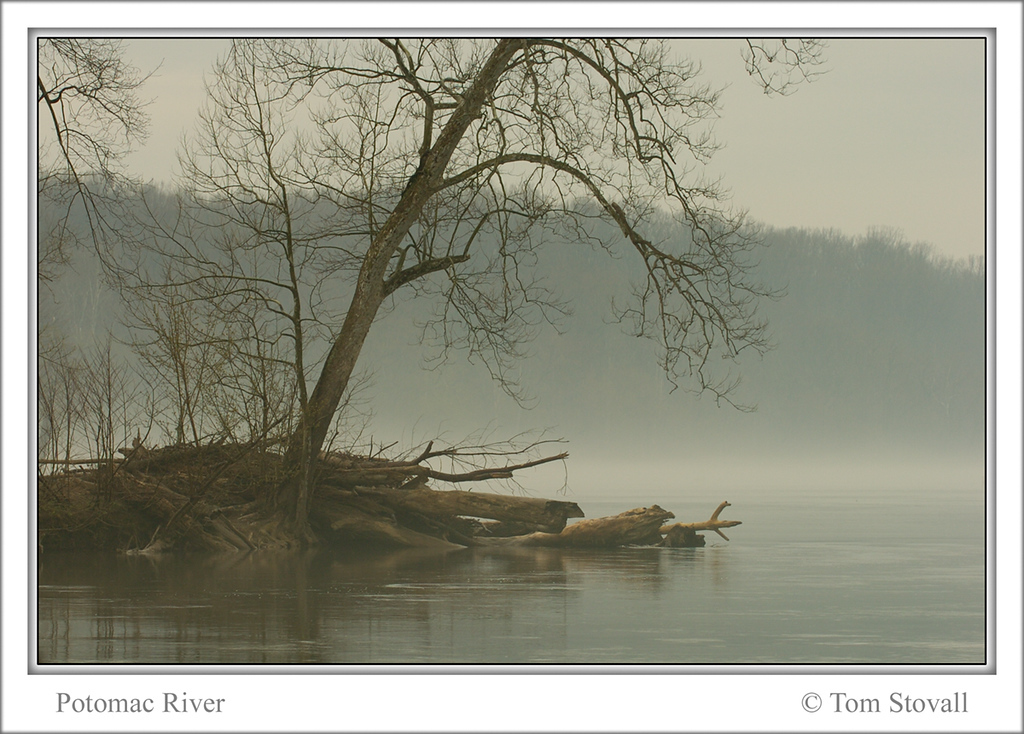 Foggy Potomac View 5 copy