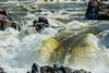 Great Falls-2908