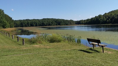 Bench with a View at Hemlock Lake