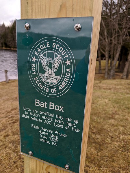 Eagle Scout PRoject at Hemlock Lake