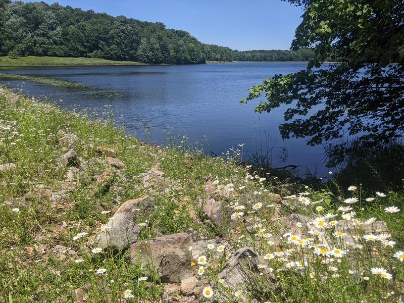Hemlock Lake - June 2021