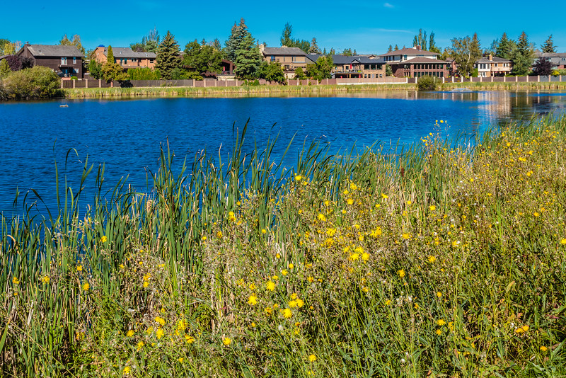 Lakeview Park