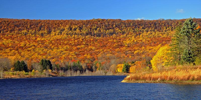 Leaser Lake - Lehigh County, PA - 2013