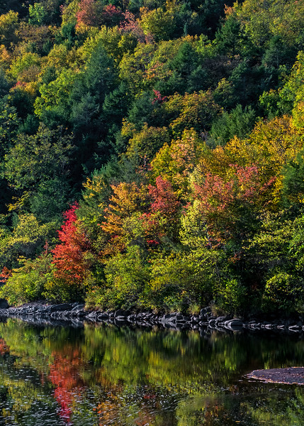 Lehigh Gorge State Park - Carbon County, PA - 2016